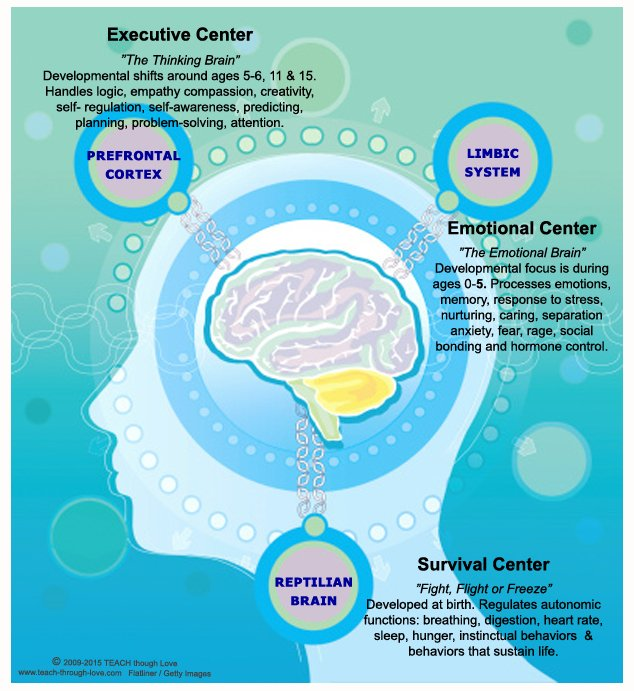 understanding the functioning of the human mind and ability to predict human behavior Organizational behavior and management human understanding and the resulting organizational experts have identified various habits of the mind that are based.